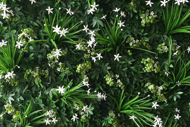 Artificial Greenwall Purity 06