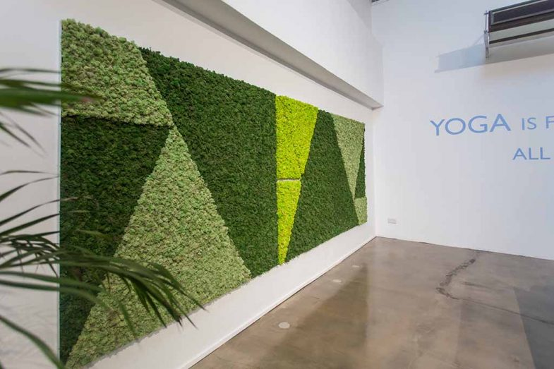 Freedom Yoga Mosswall