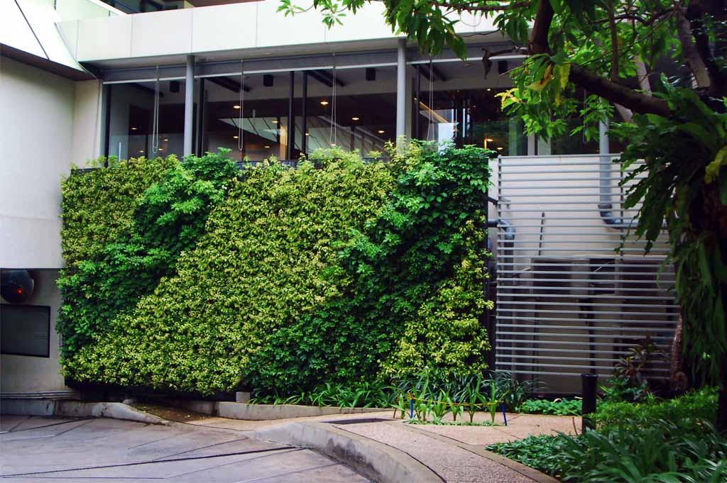 Ide vertical Garden di rumah