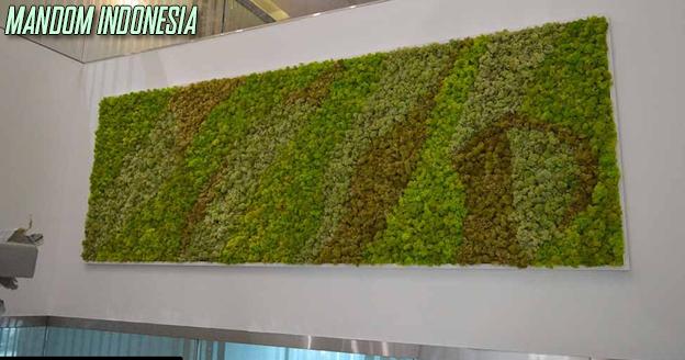 moss-green-wall-2