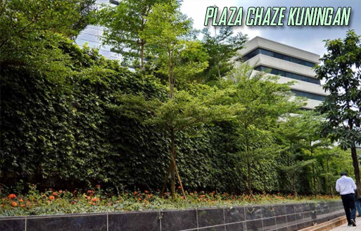 outdoor-green-wall
